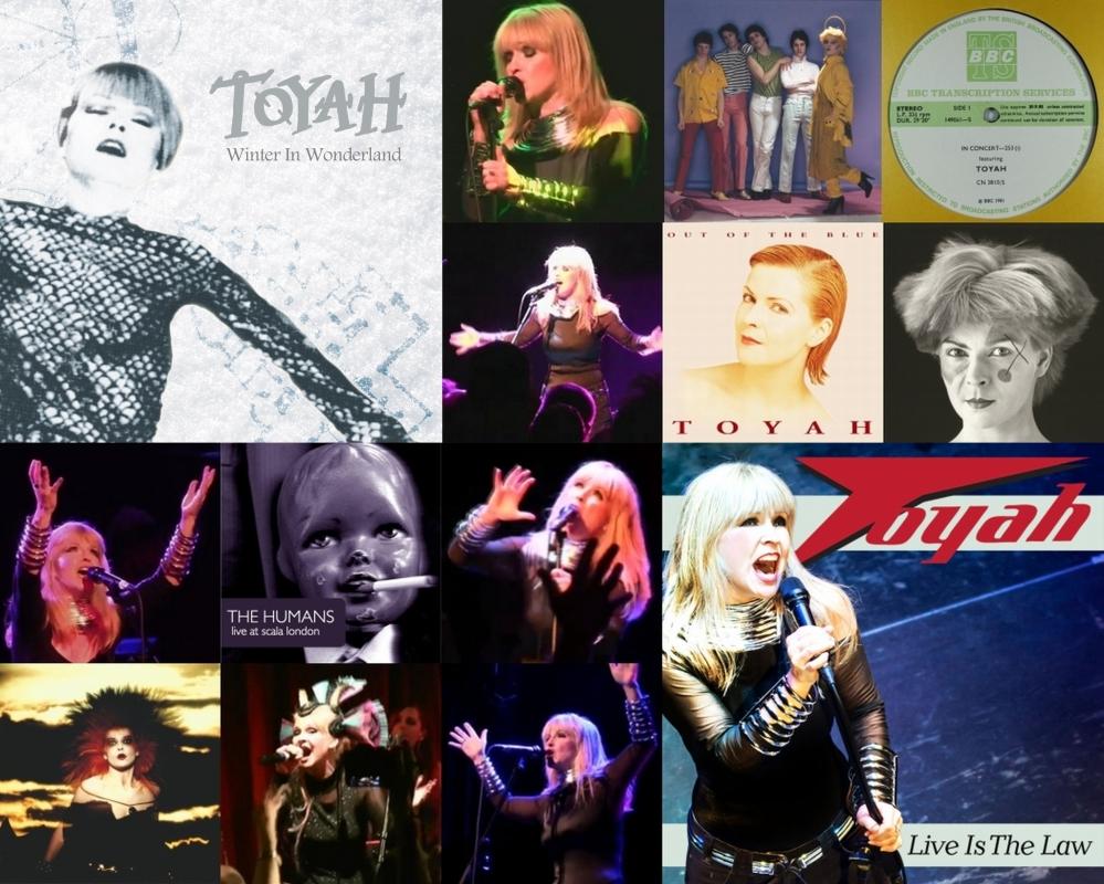 Toyah's Digital Advent 2013